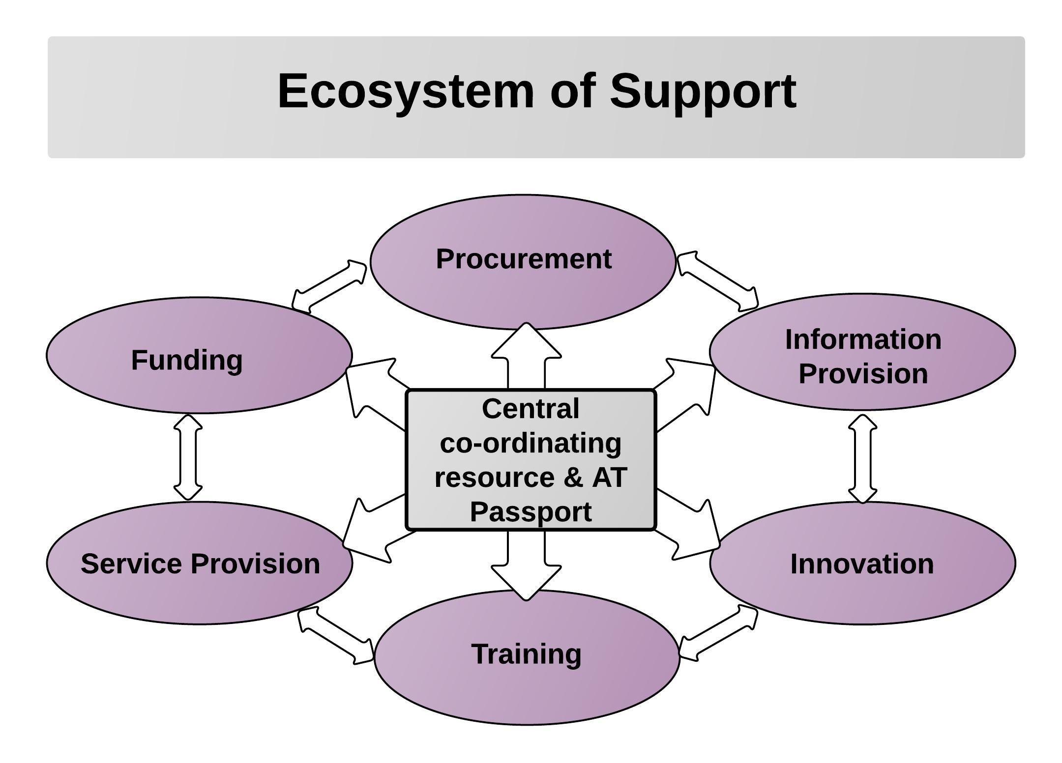 Radial type diagram with Central co-ordinating Agency & AT Passport at the centre and the folling elements surrounding it:Procurement.Information Provision.Training.Service Provision.Innovation.Funding.